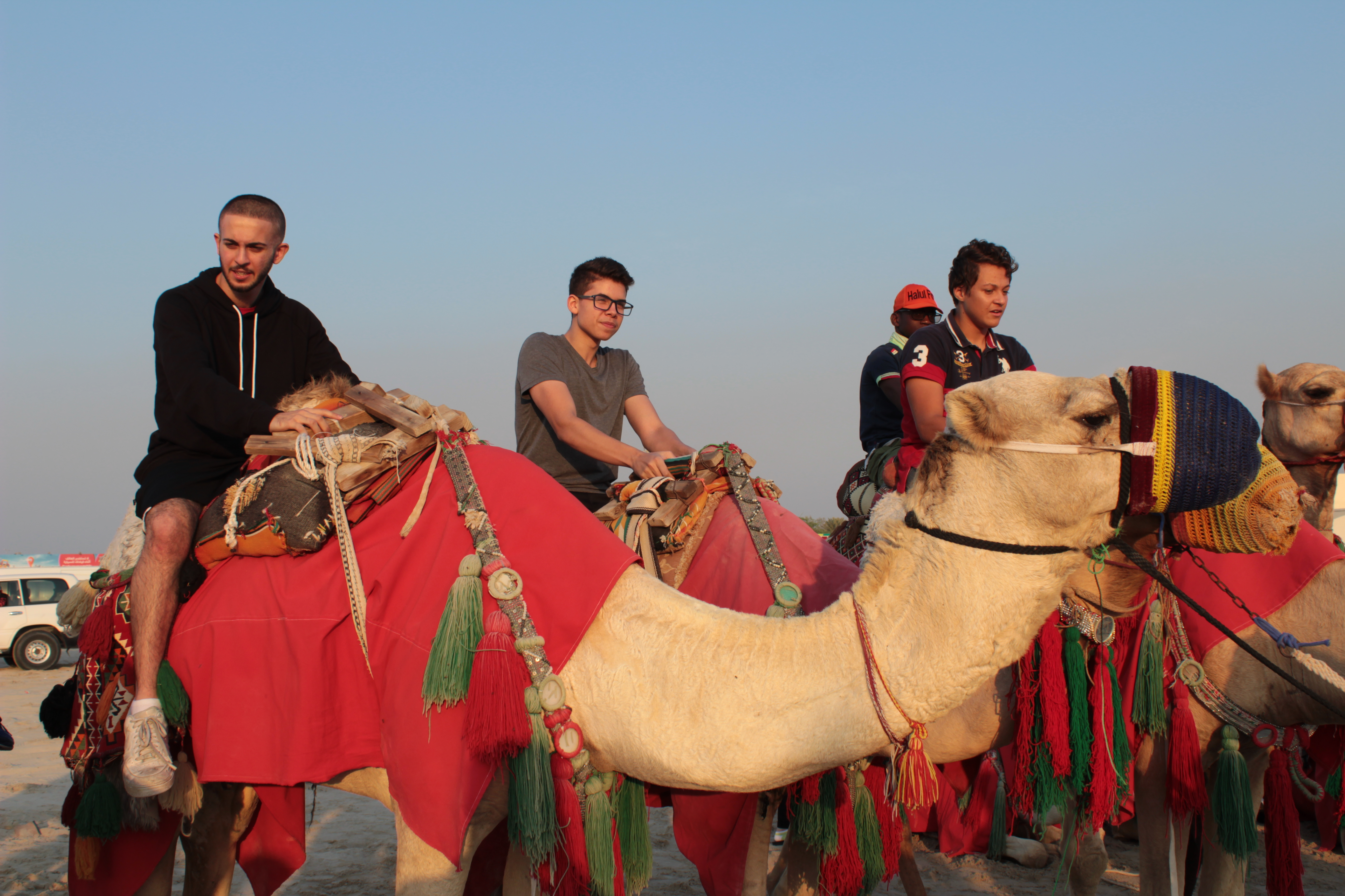 3 male students riding camels